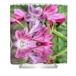 Pink Lily Flood Shower Curtain