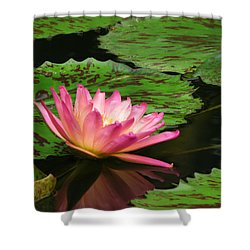 Pink Lily Reflection Shower Curtain