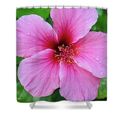 Pink Lugonia Shower Curtain