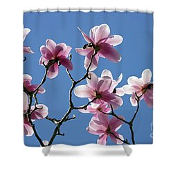 Pink Magnolias  Shower Curtain