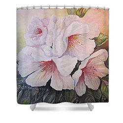 Pink Mist Shower Curtain