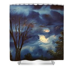 Pink Moon      19 Shower Curtain