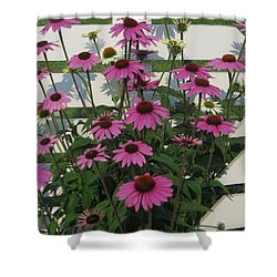 Pink On The Fence Shower Curtain by Jeanette Oberholtzer