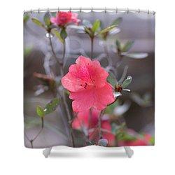 Pink Orange Flower Shower Curtain