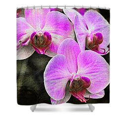 Pink Orchid Shower Curtain