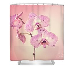 Shower Curtain featuring the photograph Pink Orchids 2 by Linda Phelps