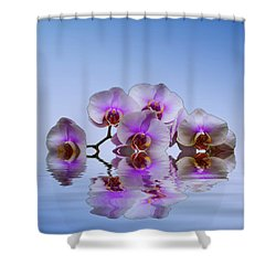 Pink Orchids Blue Background Shower Curtain