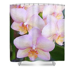 Pink Orchids13 Shower Curtain by Susan Crossman Buscho