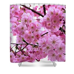 Pink Parasols Shower Curtain