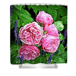 Pink Peonies And Lavender Shower Curtain