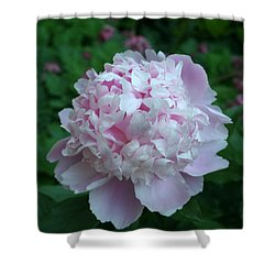 Shower Curtain featuring the digital art Pink Peony by Barbara S Nickerson