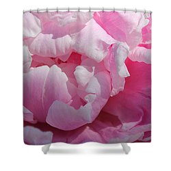 Pink Peony Shower Curtain by Lynne Guimond Sabean