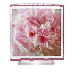 Shower Curtain featuring the photograph Pink Perfection by Wendy Wilton