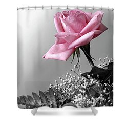 Pink Petals Shower Curtain by Carlos Caetano