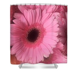Pink Petals Shower Curtain