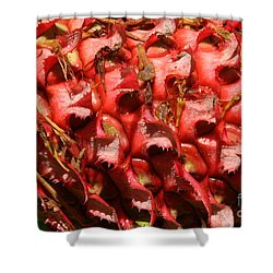 Pink Pineapple 1 Shower Curtain
