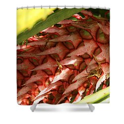 Pink Pineapple 2 Shower Curtain