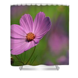 Pink Profile Shower Curtain