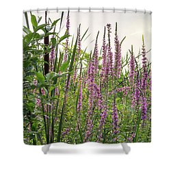 Pink Purple Beach Flowers Shower Curtain