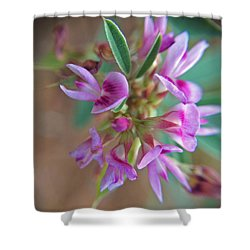 Shower Curtain featuring the photograph Pink Purple Texas Wildflower Macro by Robyn Stacey