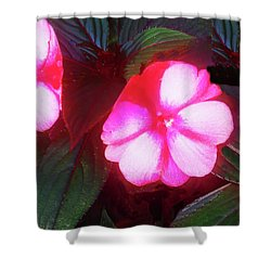 Pink Red Glow Shower Curtain