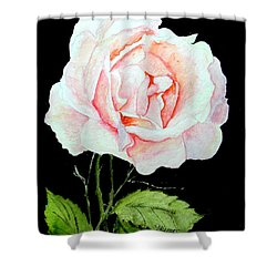 Pink Rose #1  Shower Curtain