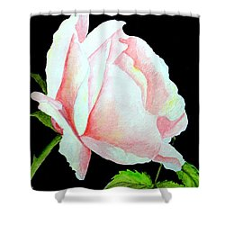 Pink Rose #2 Shower Curtain