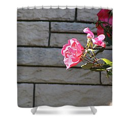 Pink Rose Against Grey Bricks Shower Curtain