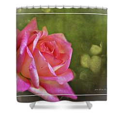 Pink Rose Dream Digital Art 3 Shower Curtain