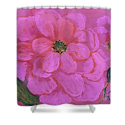 Pink Rose Flowers Shower Curtain