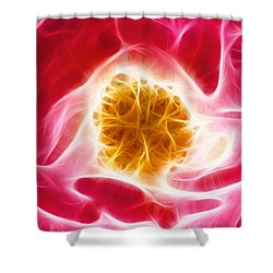 Pink Rose Fractal Shower Curtain
