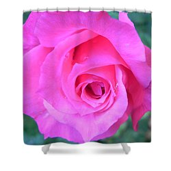 Pink Rose Shower Curtain by John Parry