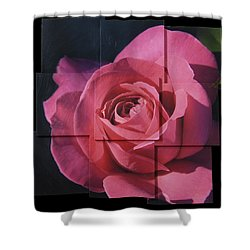 Pink Rose Photo Sculpture Shower Curtain
