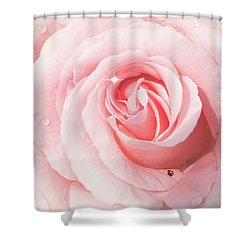 Pink Rose With Rain Drops Shower Curtain
