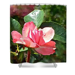 Pink Roses In The Rain 2 Shower Curtain by Janis Nussbaum Senungetuk