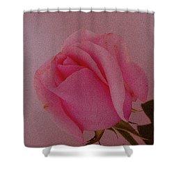 Pink Single Rose Shower Curtain