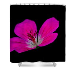 Pink Stamen Shower Curtain by Richard Patmore