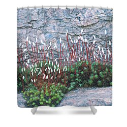 Pink Stony Creek Granite Still Life Study Shower Curtain