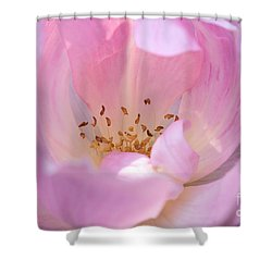 Pink Swirls Shower Curtain