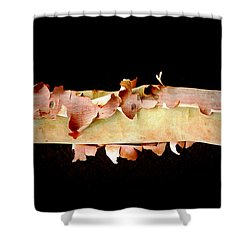 Pink Tree Bark Shower Curtain