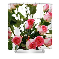 Pink Trimmed Roses Shower Curtain by Marilyn Hunt