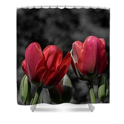 Pink Tulip Pop Shower Curtain