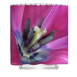 Shower Curtain featuring the photograph Pink Tulip Stamens by David and Carol Kelly
