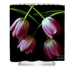 Pink Tulip Weave Shower Curtain by Shirley Mangini