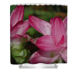 Pink Twins Shower Curtain