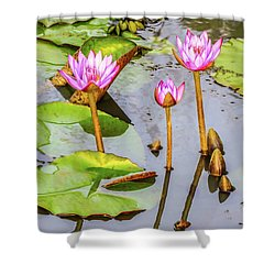 Pink Water Lilies In A Pond Shower Curtain