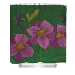 Pink Whispers Shower Curtain