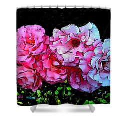 Shower Curtain featuring the photograph Pink - White Roses  by Sadie Reneau