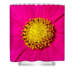 Shower Curtain featuring the photograph Pink Wildflower 008 by George Bostian