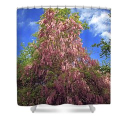 Shower Curtain featuring the photograph Pink Wisteria by Donna Kennedy